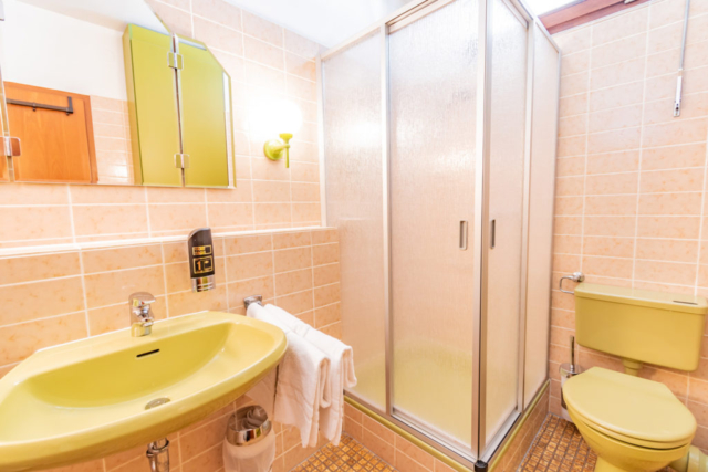 Shower, toilet, and sink in a hotel bedroom.